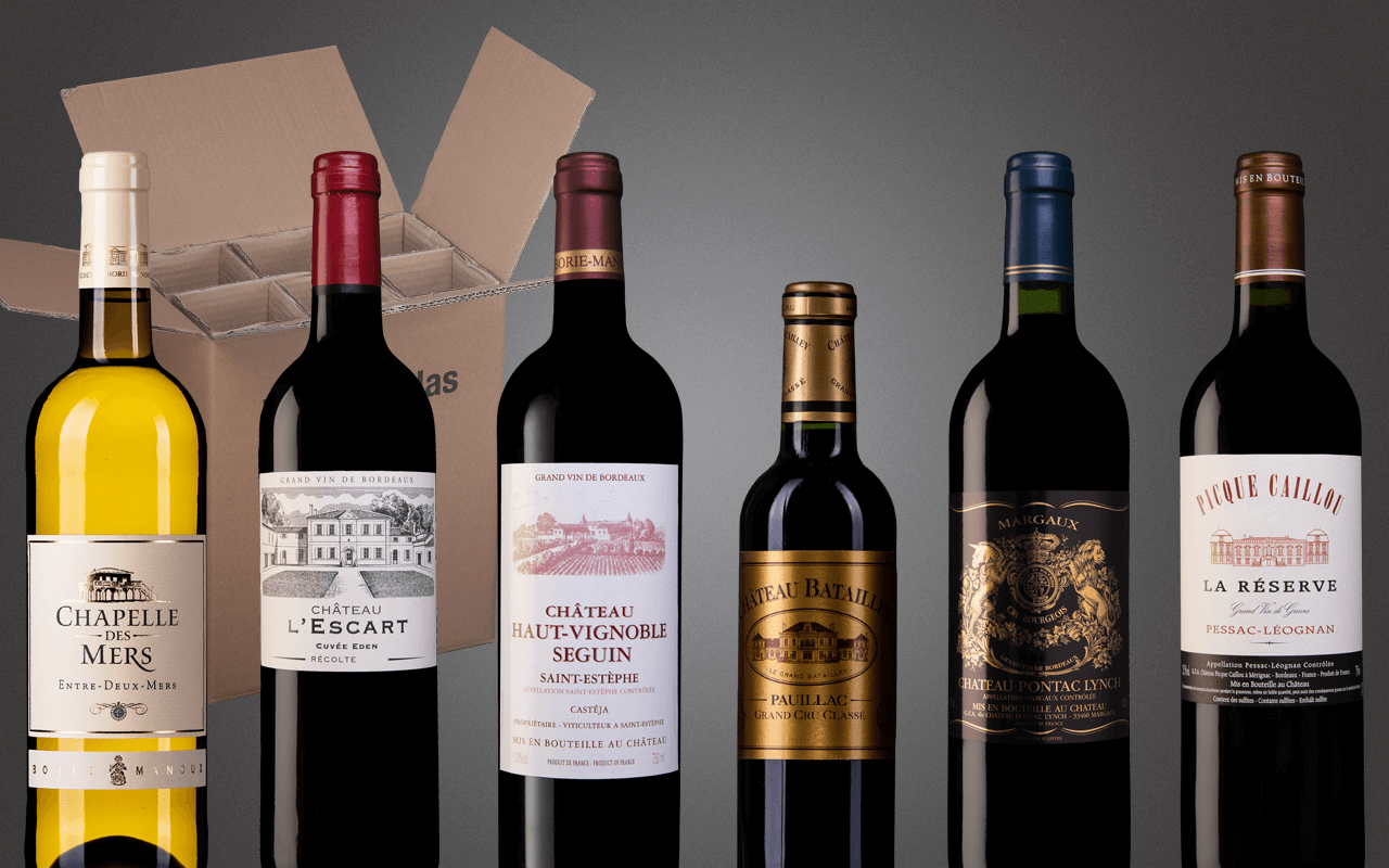 "Probierbox 6er ""Linkes Ufer Bordeaux - Bestes von Pessac bis Saint-Èstephe"" (Abholpreis)"