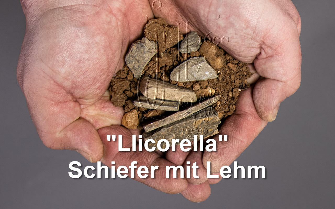 "2009 Font de la Figuera Magnum Bio ""Llicorella Schiefer Lehm"" Priorat, Spanien"