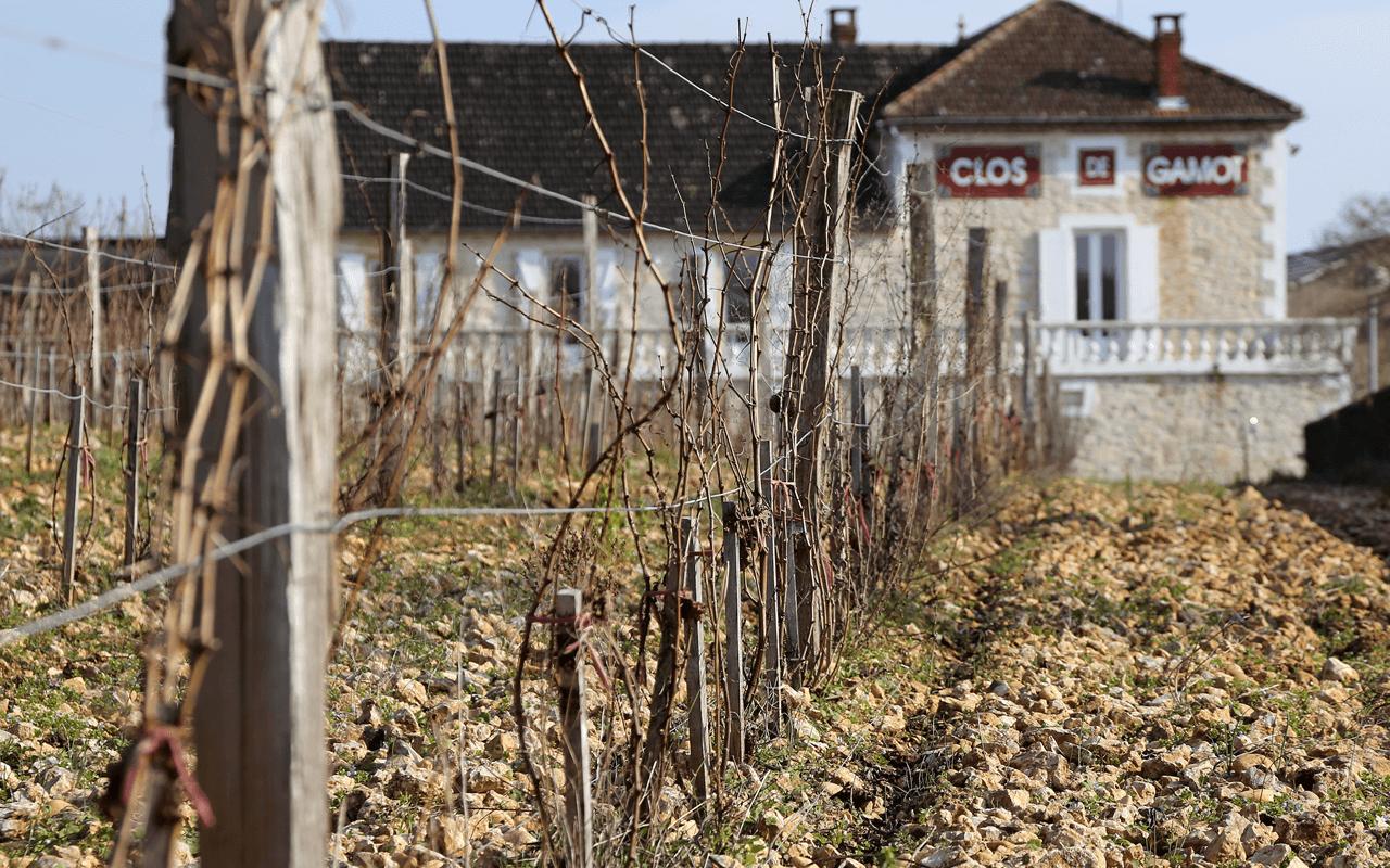 "1999 Clos Saint Jean ""Kalkstein"" Cahors, Frankreich"