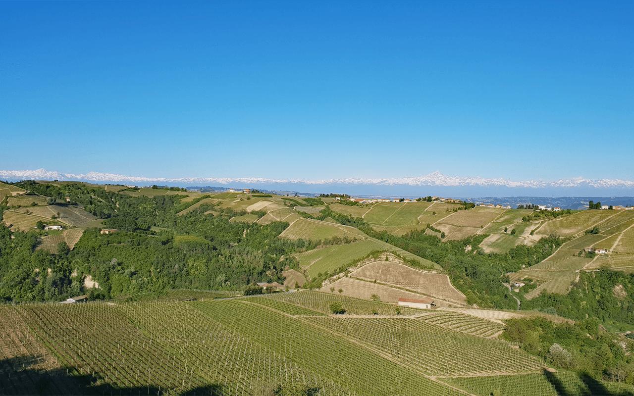 """2009 Barbaresco Basarin Magnum Riserva Grand Cru """"Sandstein"""" Piemont, Italien"""