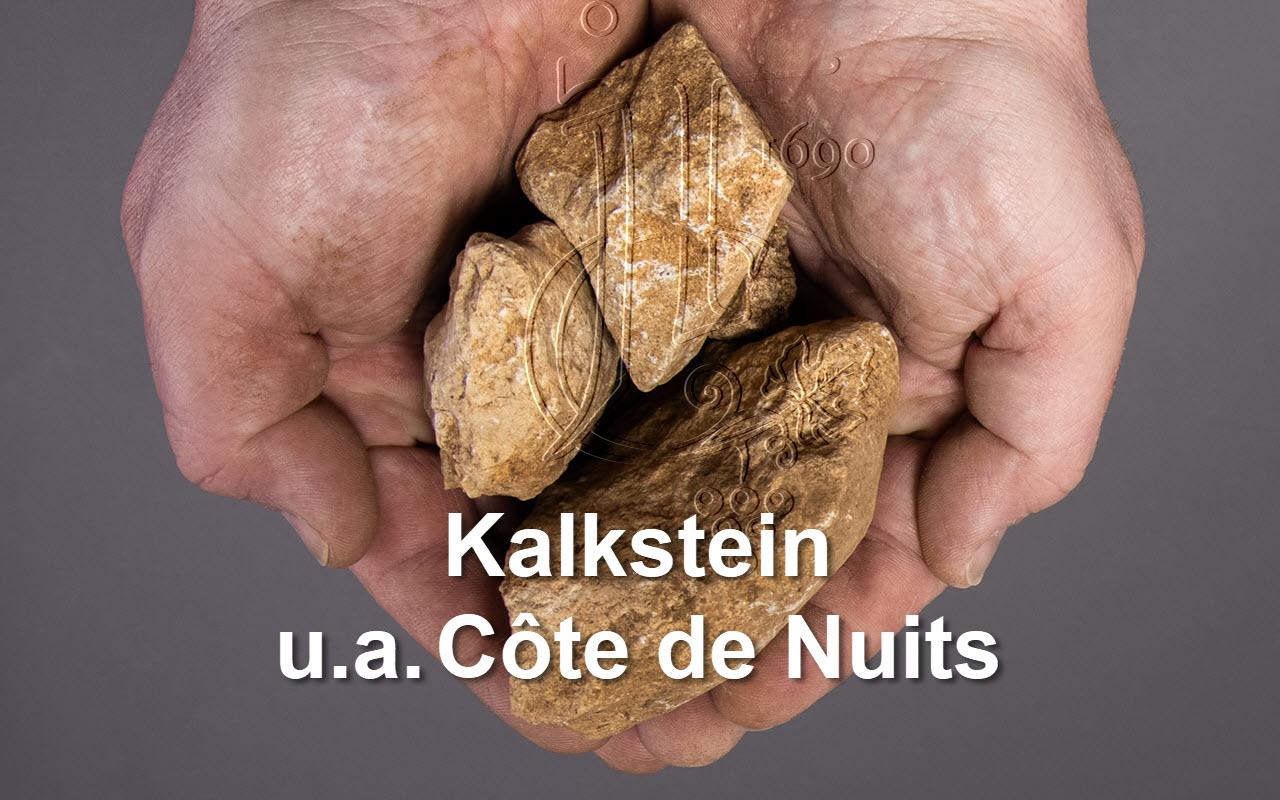 """2006 Charmes-Chambertin Grand Cru """"Kalkstein"""" Côte de Nuits Burgund, Frankreich"""